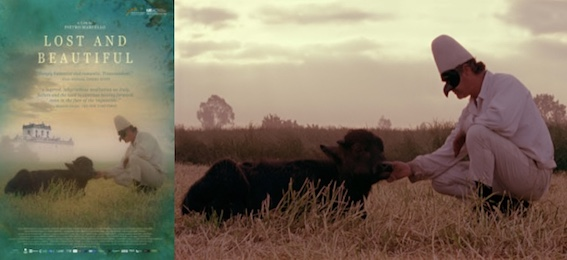 poster and an image from Bella e perduta / Lost and Beautiful