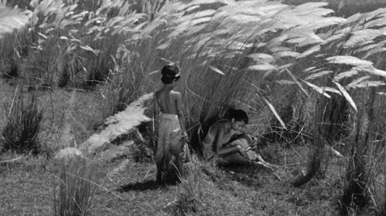 an image from the first of Satyajit Ray's Apu trilogy, Pather Panchali